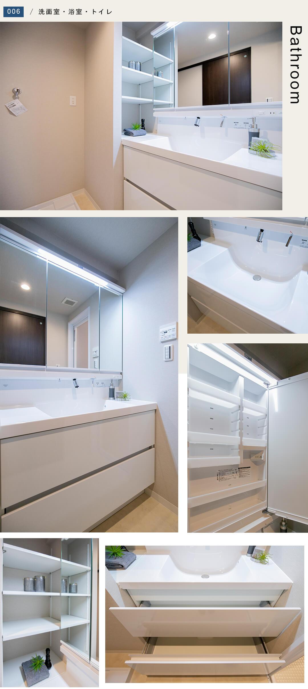 高田馬場デュープレックスⅡの洗面室