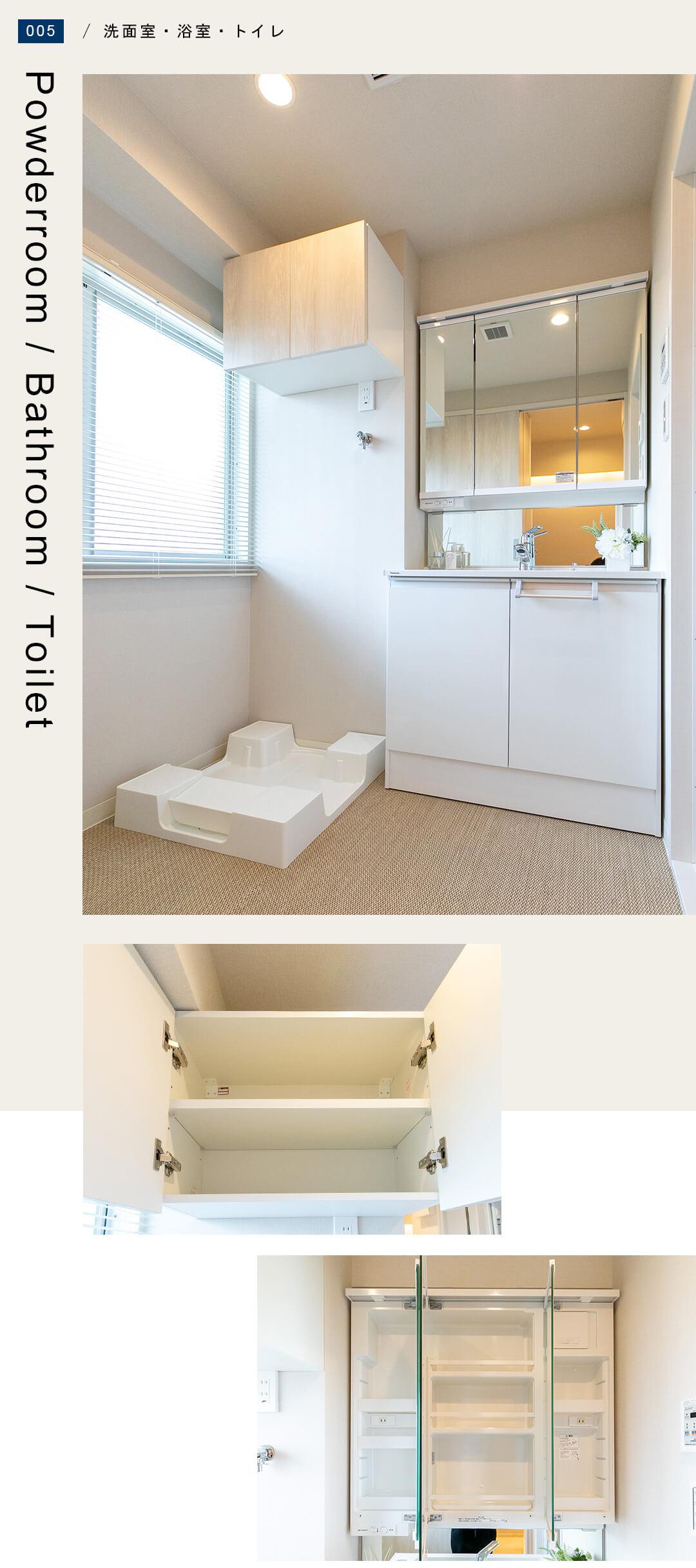 ライオンズマンション学芸大学の洗面室