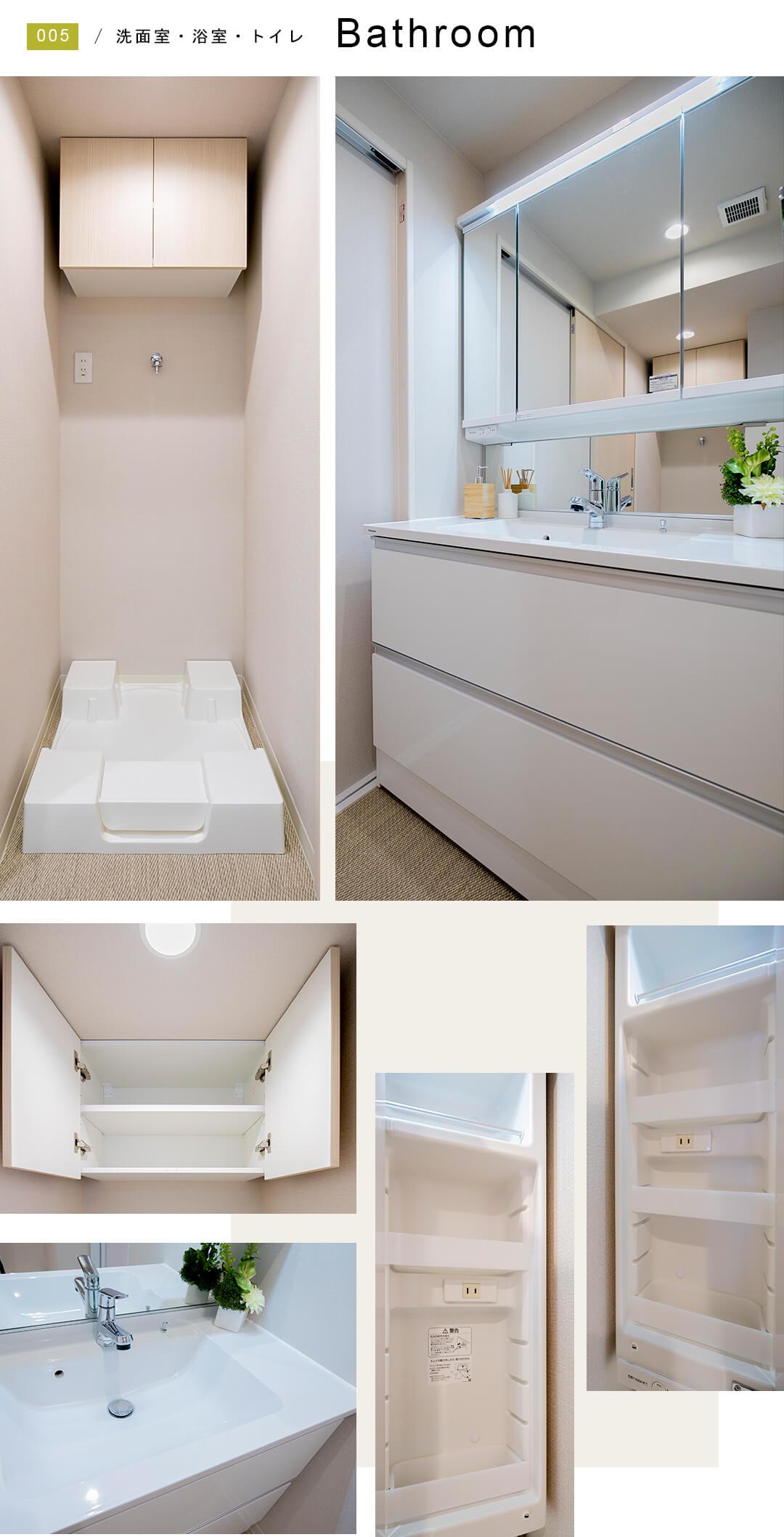 ステイツ菊川の洗面室