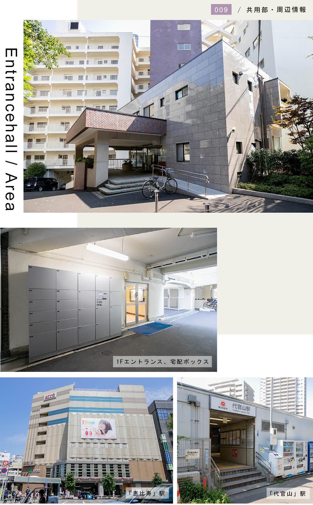 マンション恵比寿苑の外観と共用部と周辺情報