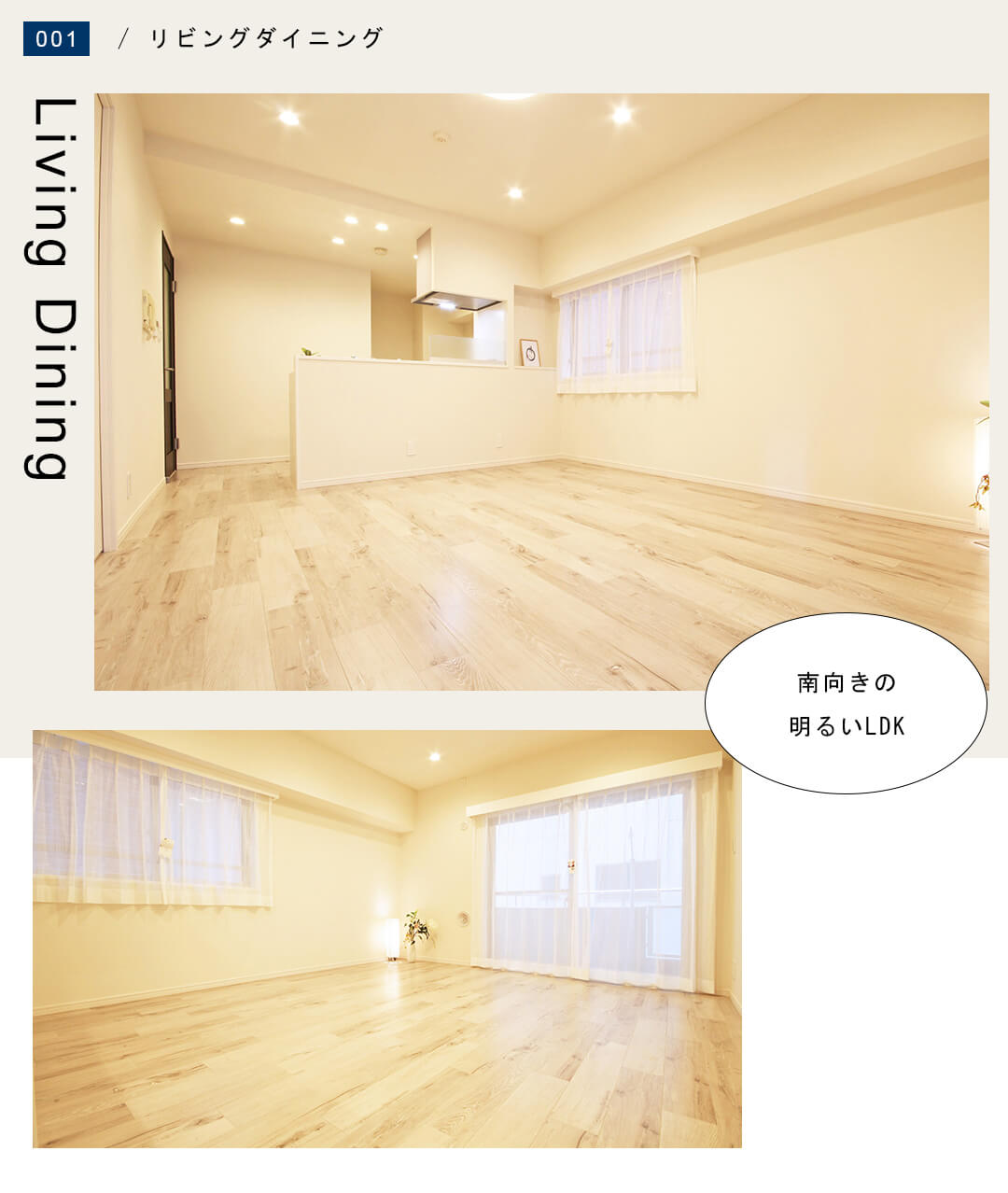 菱和パレス錦糸町 203号室のリビングダイニングキッチン