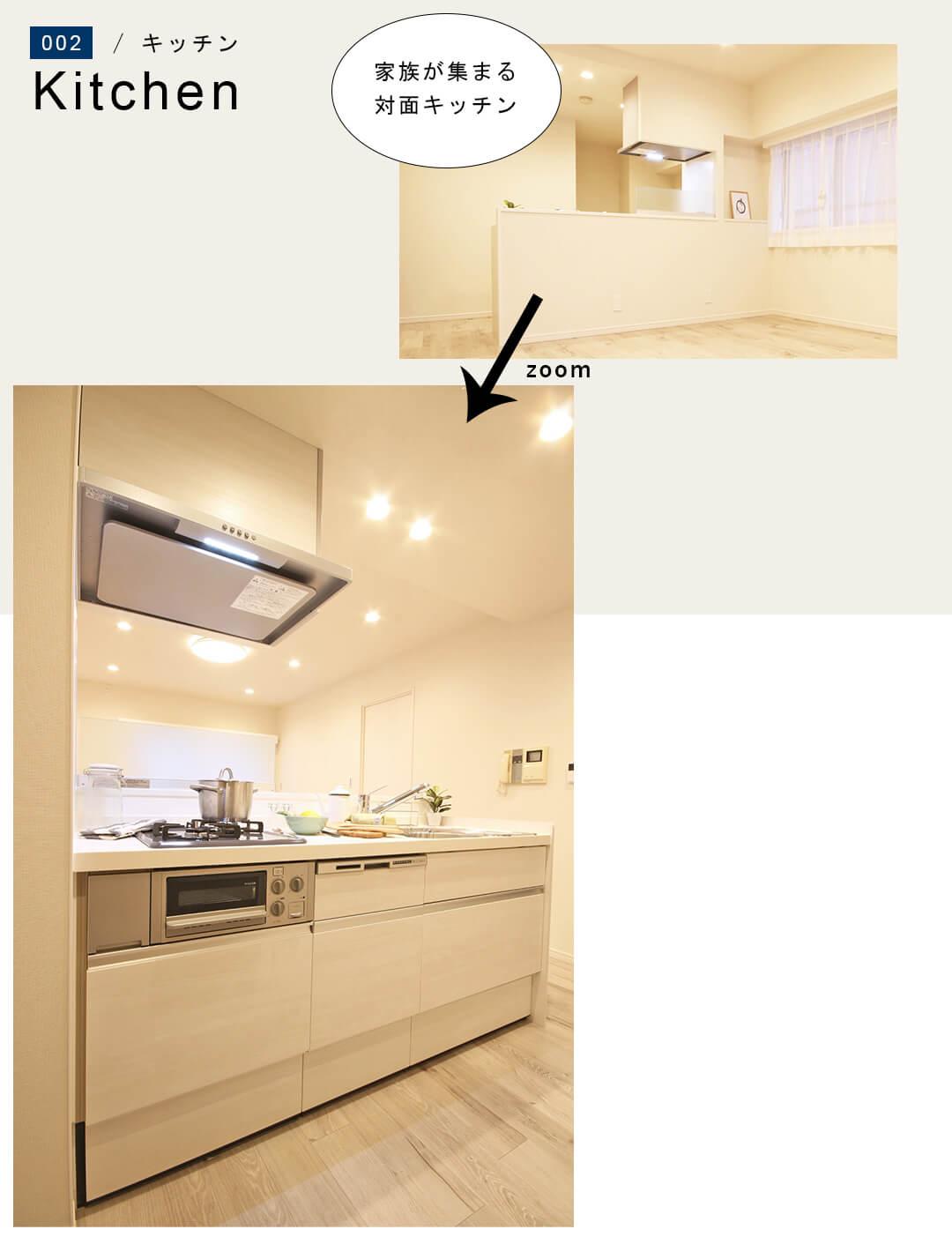 菱和パレス錦糸町 203号室のキッチン