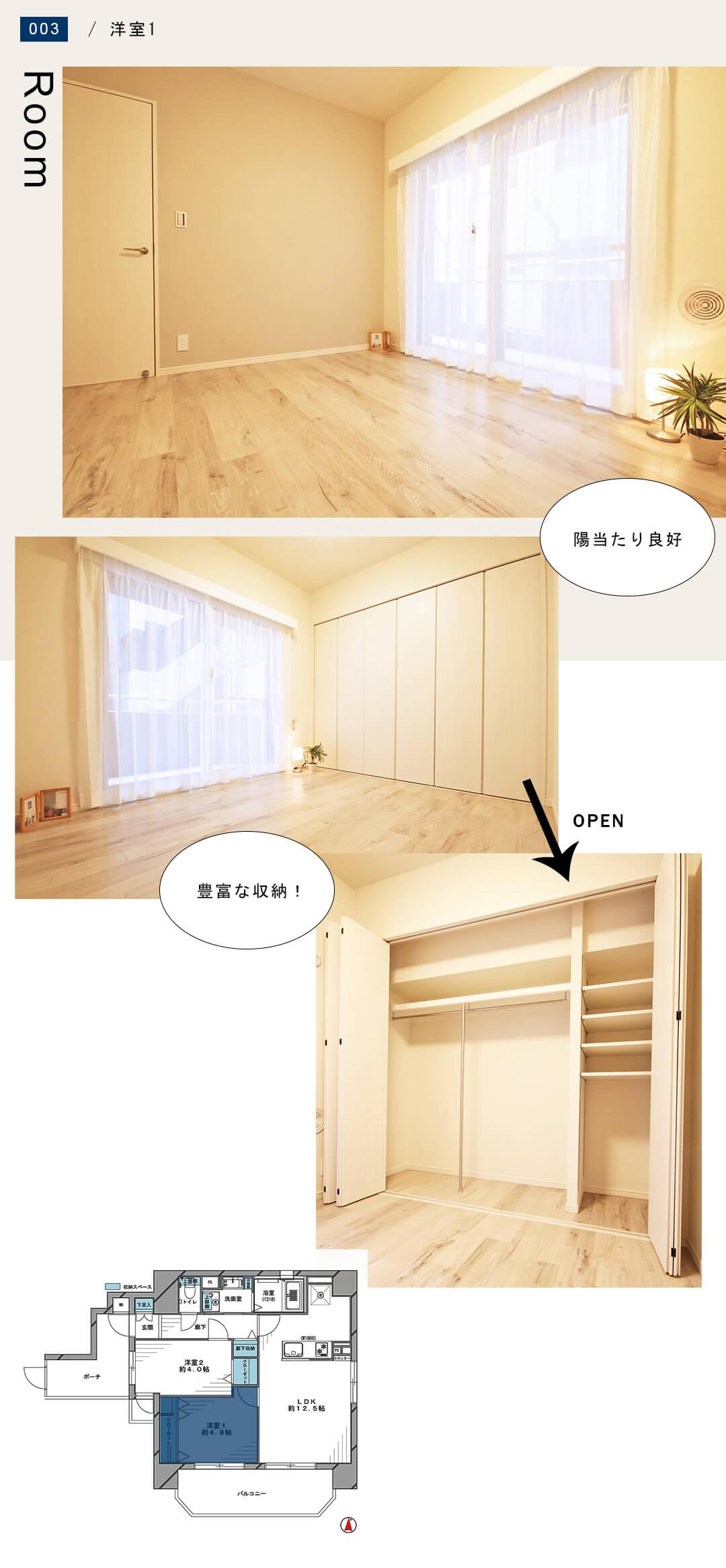 菱和パレス錦糸町 203号室の洋室1