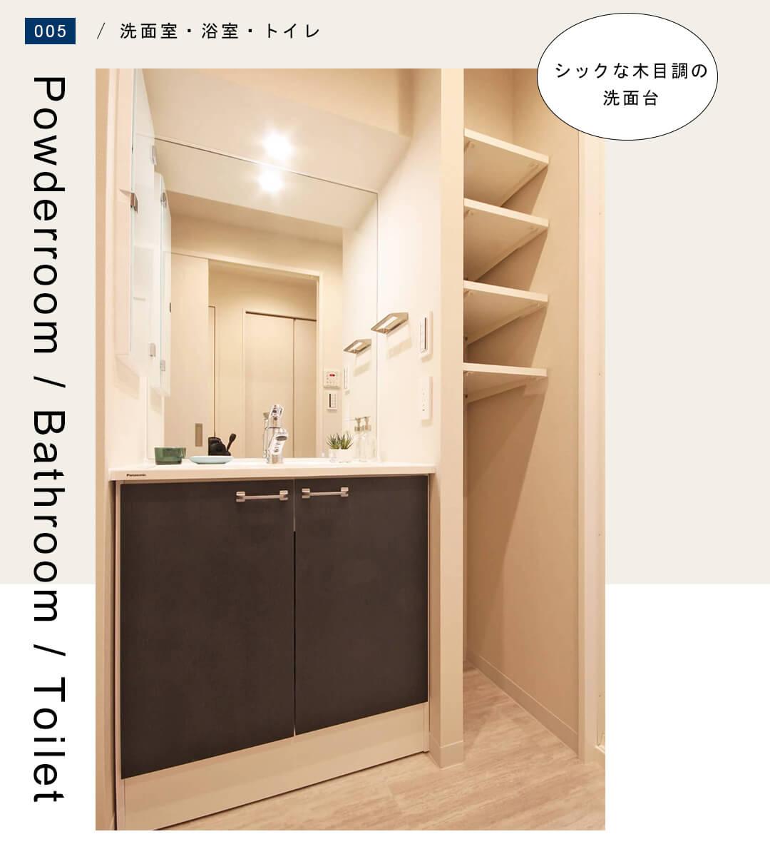 菱和パレス錦糸町 203号室の洗面室