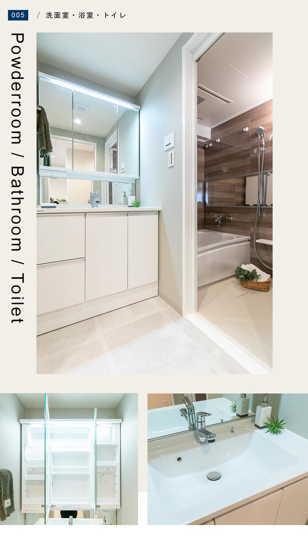 エクレール五反田の洗面室