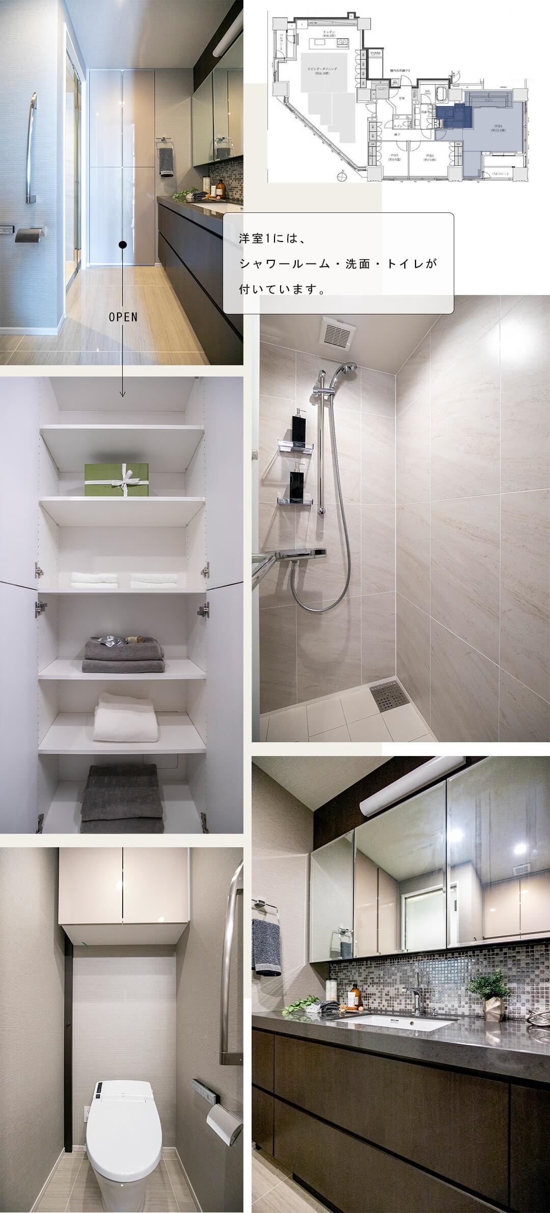 THE 千代田麹町 TOWERの洋室1の洗面室