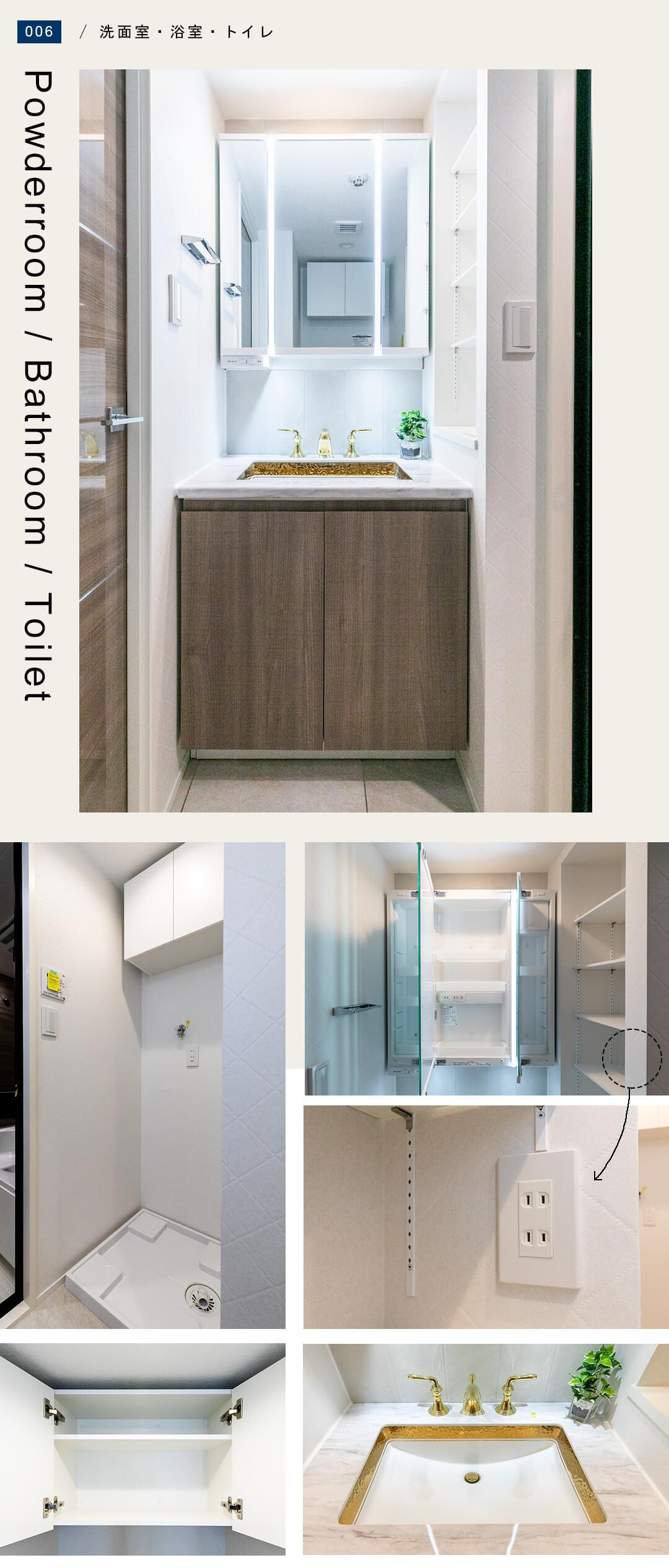 コスモ三軒茶屋 102の洗面室