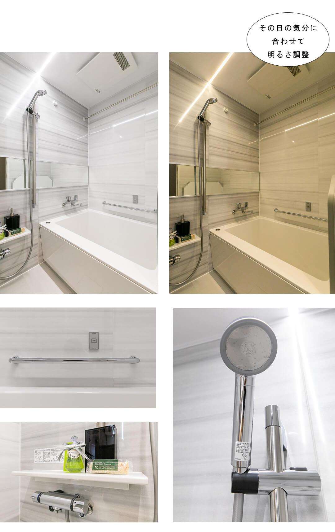 朝日プラザ新蒲田 415の浴室