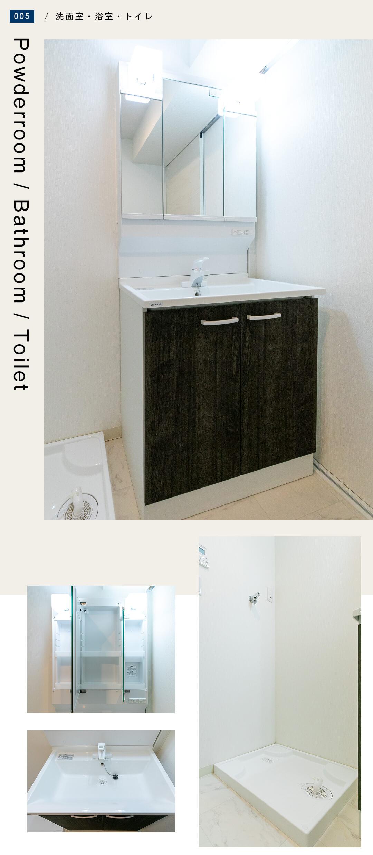 ライオンズマンション白金第3の洗面室
