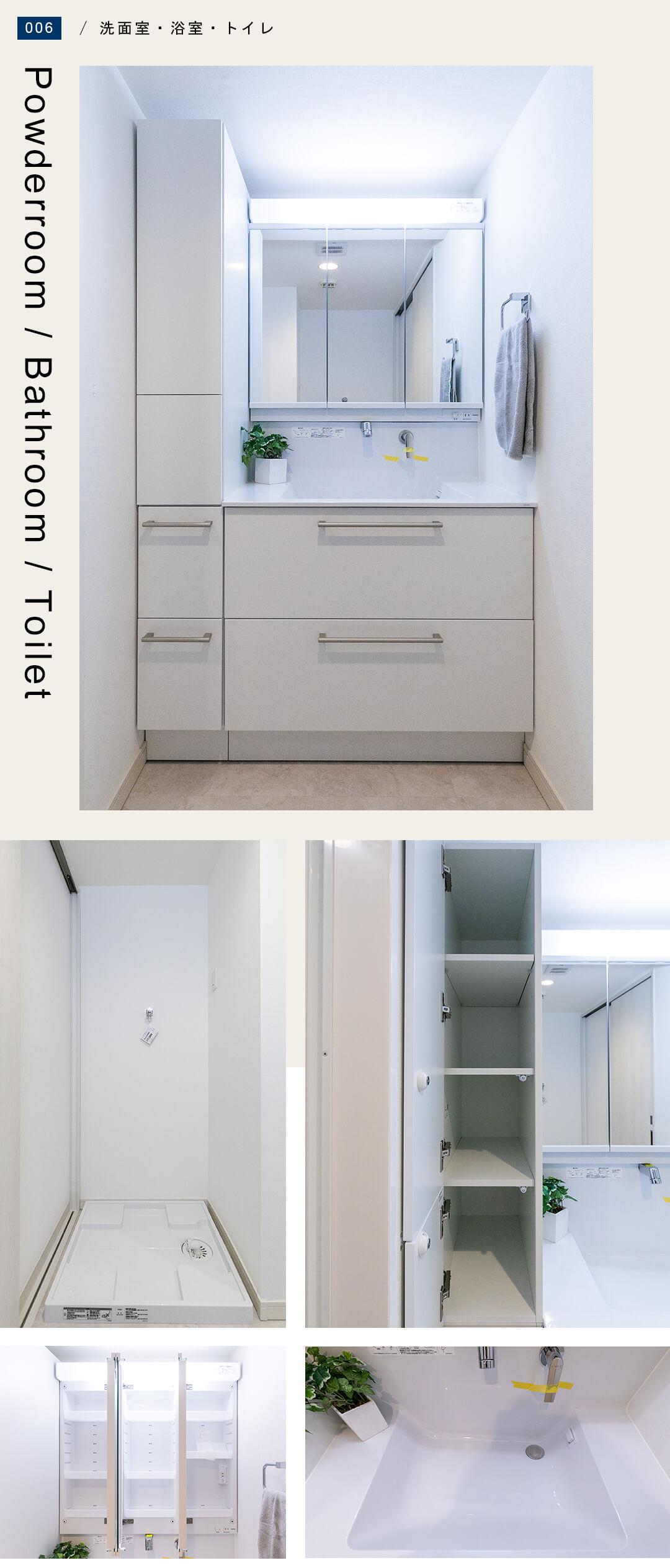 パルミナード尾山台弐番館304の洗面室