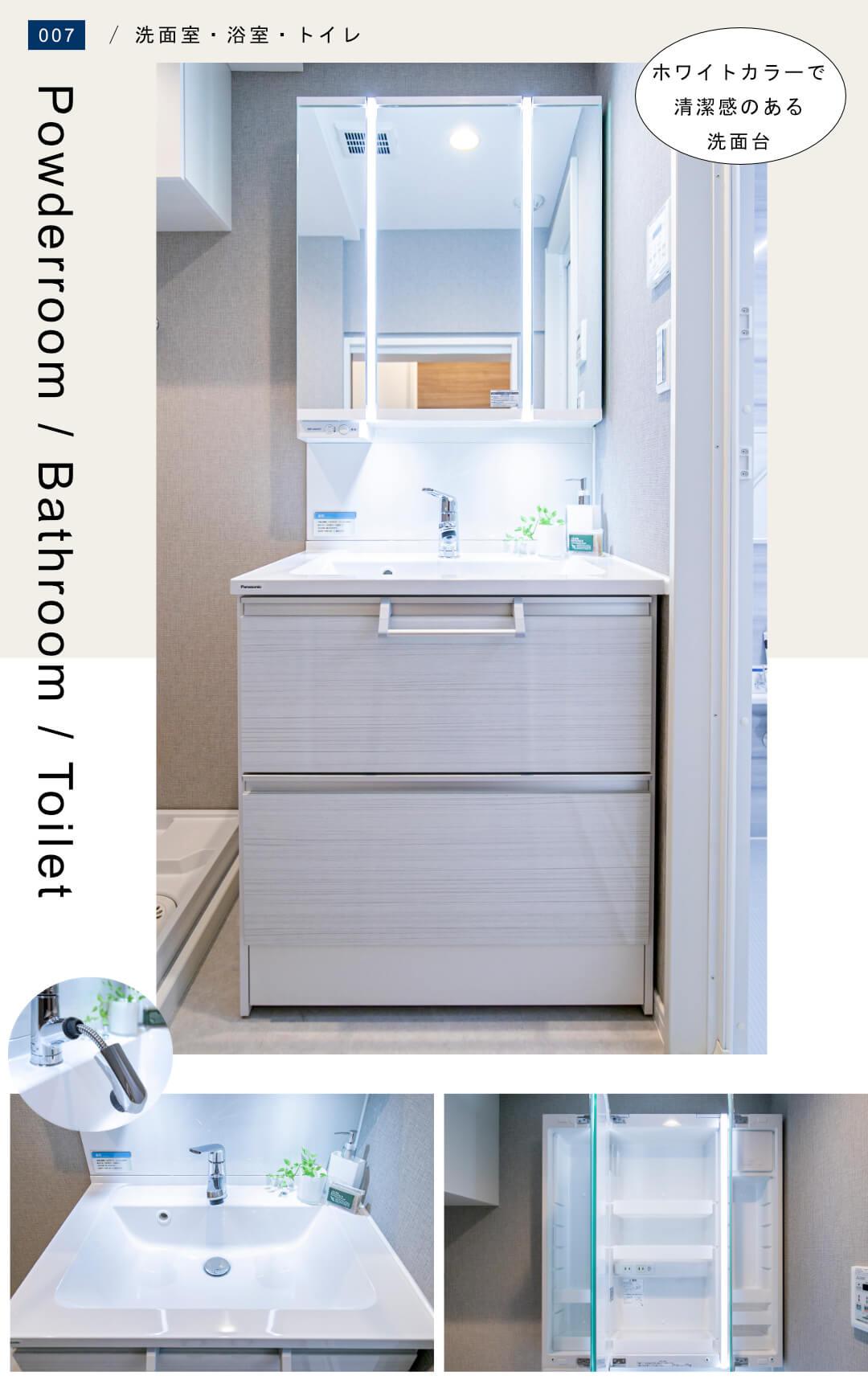 ハイマート渋谷神泉 302の洗面室
