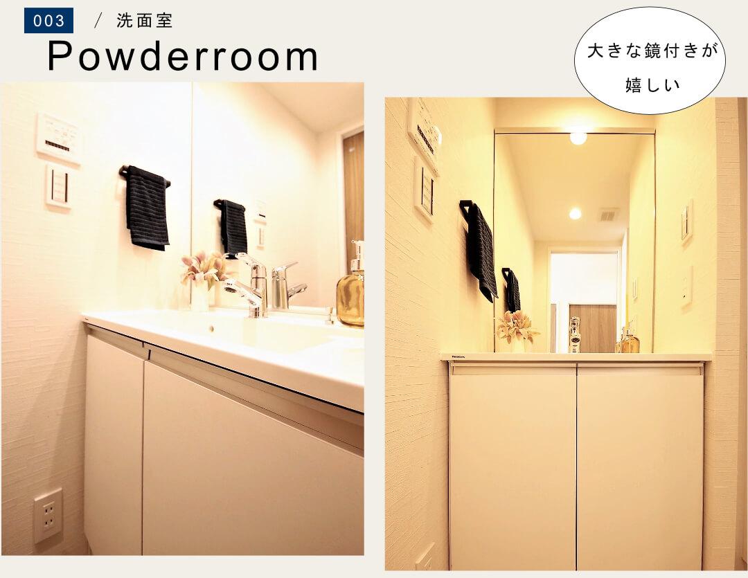 マンションニュー恵比寿の洗面室