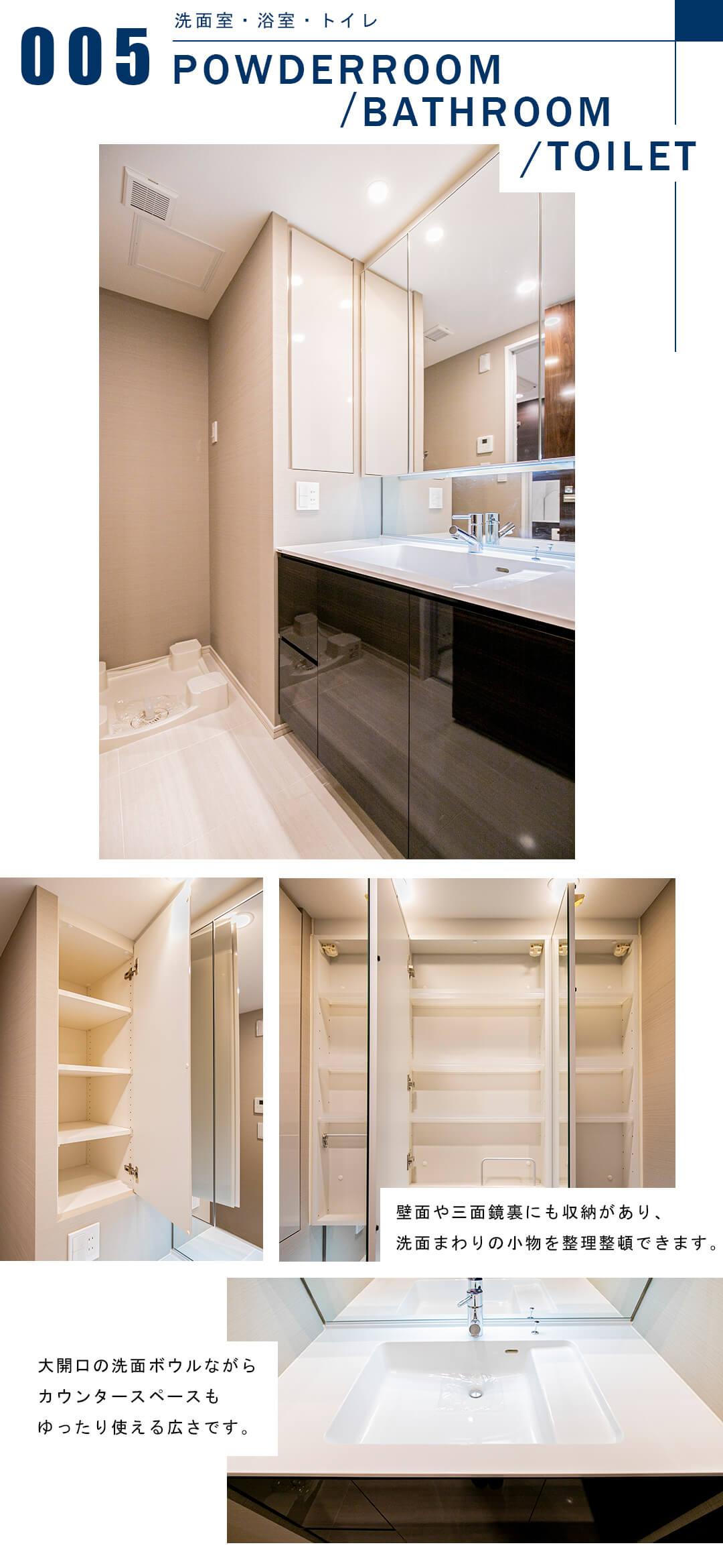 シティハウス目黒ザ・ツインSOUTH棟の洗面室